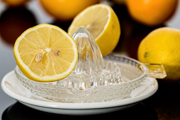 Zwei Zitronenhälften auf gläserner Fruchtpresse